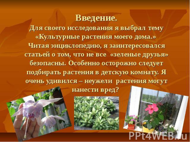 Введение.Для своего исследования я выбрал тему «Культурные растения моего дома.» Читая энциклопедию, я заинтересовался статьей о том, что не все «зеленые друзья» безопасны. Особенно осторожно следует подбирать растения в детскую комнату. Я очень уди…