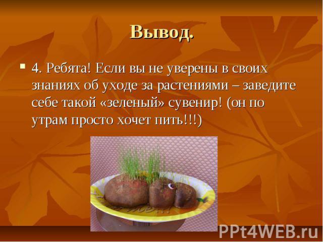 Вывод.4. Ребята! Если вы не уверены в своих знаниях об уходе за растениями – заведите себе такой «зеленый» сувенир! (он по утрам просто хочет пить!!!)