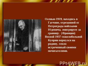 Осенью 1919, находясь в Гатчине, отрезанной от Петрограда войсками Юденича, эмиг