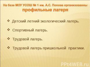 На базе МОУ УСОШ № 1 им. А.С. Попова организованны профильные лагеря Детский лет