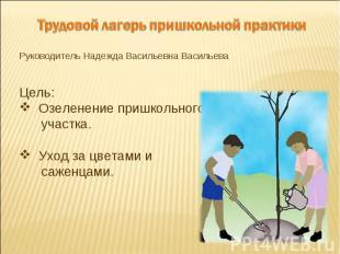 Трудовой лагерь пришкольной практикиРуководитель Надежда Васильевна ВасильеваЦел
