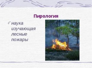 Пирология наука изучающая лесные пожары