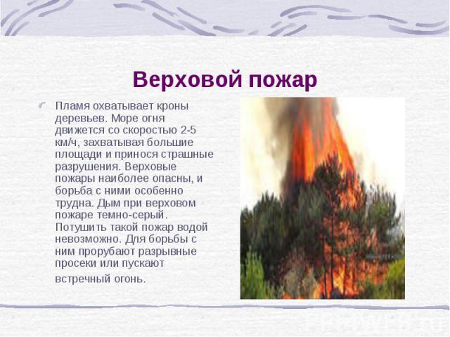 Верховой пожар Пламя охватывает кроны деревьев. Море огня движется со скоростью 2-5 км/ч, захватывая большие площади и принося страшные разрушения. Верховые пожары наиболее опасны, и борьба с ними особенно трудна. Дым при верховом пожаре темно-серый…