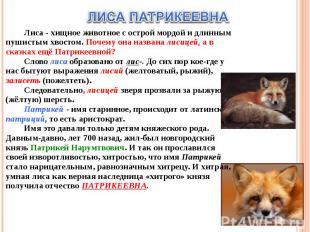 ЛИСА ПАТРИКЕЕВНАЛиса - хищное животное с острой мордой и длинным пушистым хвосто