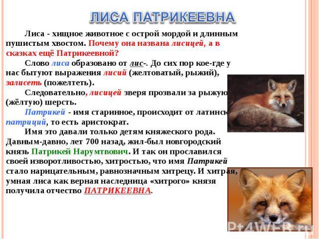 ЛИСА ПАТРИКЕЕВНАЛиса - хищное животное с острой мордой и длинным пушистым хвостом. Почему она названа лисицей, а в сказках ещё Патрикеевной?Слово лиса образовано от лис-. До сих пор кое-где у нас бытуют выражения лисий (желтоватый, рыжий), залисеть …