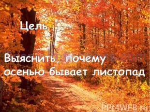Цель :Выяснить, почему осенью бывает листопад