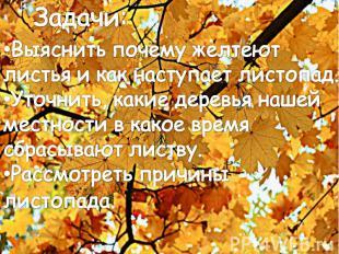 Задачи:Выяснить почему желтеют листья и как наступает листопад.Уточнить, какие д