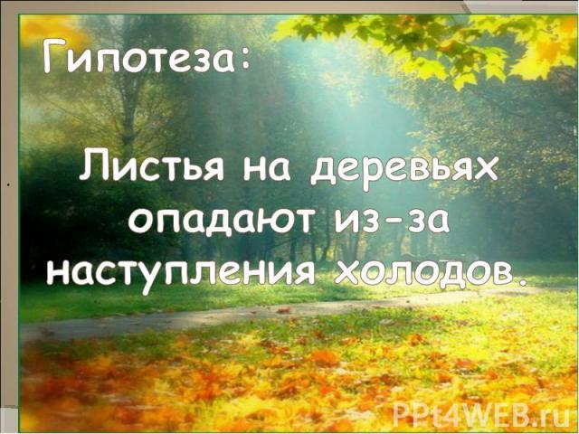 Гипотеза:Листья на деревьях опадают из-за наступления холодов.