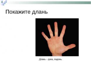 Покажите дланьДлань – рука, ладонь
