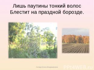 Лишь паутины тонкий волосБлестит на праздной борозде.