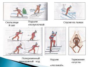 Скользящий шагПодъем «полуелочкой»Спуски на лыжахПопеременный двухшажный ходПодъ