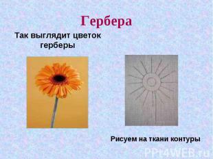 ГербераТак выглядит цветок герберыРисуем на ткани контуры