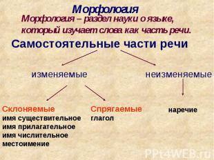 МорфологияМорфология – раздел науки о языке, который изучает слова как часть реч
