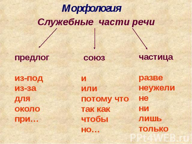 МорфологияСлужебные части речипредлогиз-подиз-задляоколопри… союз иилипотому чтотак какчтобы но…частицаразве неужелине ни лишь только