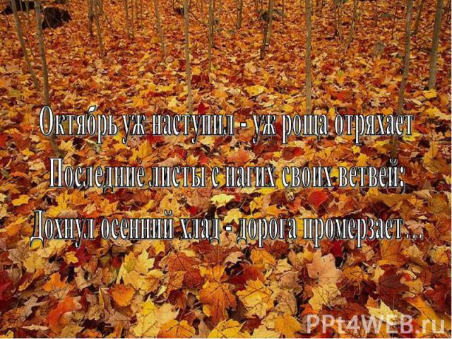 Октябрь уж наступил - уж роща отряхаетПоследние листы с нагих своих ветвей;Дохнул осенний хлад - дорога промерзает…