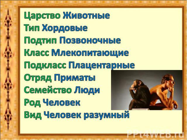 Царство Животные Тип ХордовыеПодтип ПозвоночныеКласс МлекопитающиеПодкласс ПлацентарныеОтряд ПриматыСемейство ЛюдиРод ЧеловекВид Человек разумный