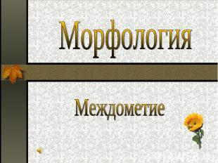 Морфология Междометие