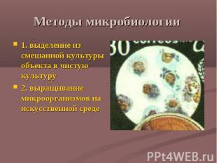 Методы микробиологии 1. выделение из смешанной культуры объекта в чистую культур