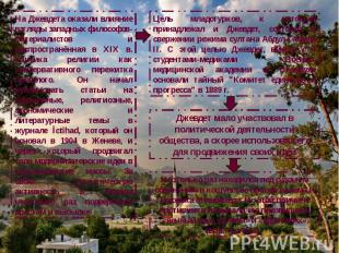 На Джевдета оказали влияние взгляды западных философов-материалистов и распростр