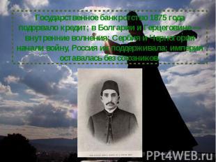 Государственное банкротство 1875 года подорвало кредит; в Болгарии и Герцеговине
