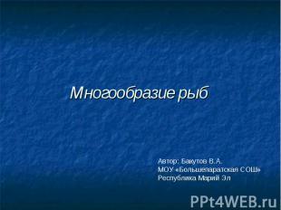 Многообразие рыб Автор: Бакутов В.А. МОУ «Большепаратская СОШ» Республика Марий