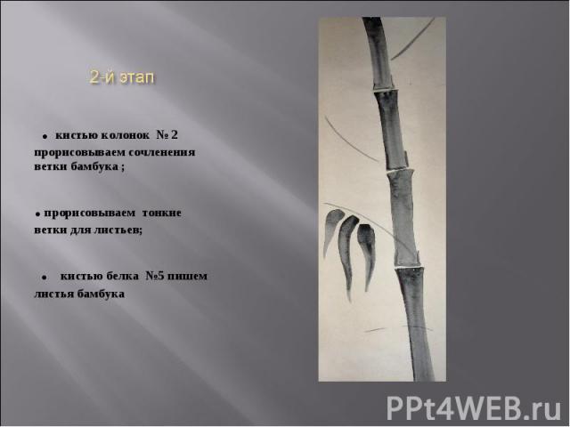 2-й этап . кистью колонок № 2 прорисовываем сочленения ветки бамбука ;. прорисовываем тонкие ветки для листьев; . кистью белка №5 пишем листья бамбука