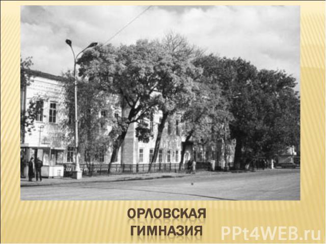 Орловская гимназия