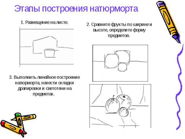 1. Размещение на листе.Этапы построения натюрморта 2. Сравните фрукты по ширине и высоте, определите форму предметов. 3. Выполнить линейное построение натюрморта, нанести складки драпировки и светотени на предметах.