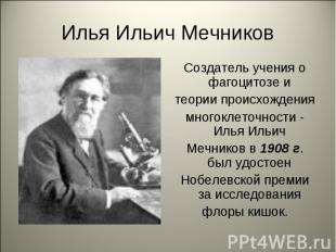 Илья Ильич Мечников Создатель учения о фагоцитозе и теории происхождения многокл
