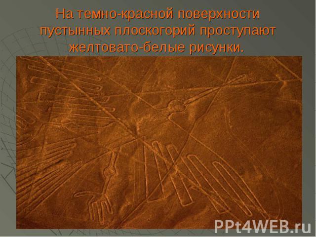 На темно-красной поверхности пустынных плоскогорий проступают желтовато-белые рисунки.