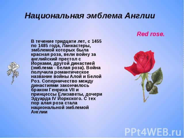 Национальная эмблема Англии В течение тридцати лет, с 1455 по 1485 года, Ланкастеры, эмблемой которых была красная роза, вели войну за английский престол с Йорками, другой династией (эмблема - белая роза). Война получила романтическое название войны…