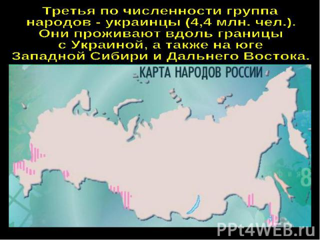 Третья по численности группа народов - украинцы (4,4 млн. чел.).Они проживают вдоль границыс Украиной, а также на юге Западной Сибири и Дальнего Востока.