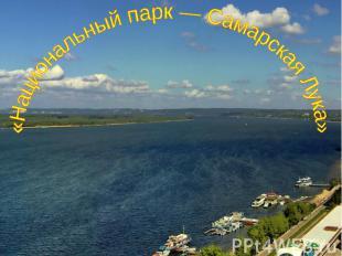 Национальный парк — Самарская Лука