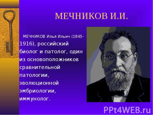 МЕЧНИКОВ И.И. МЕЧНИКОВ Илья Ильич (1845-1916), российский биолог и патолог, один из основоположников сравнительной патологии, эволюционной эмбриологии, иммунолог.