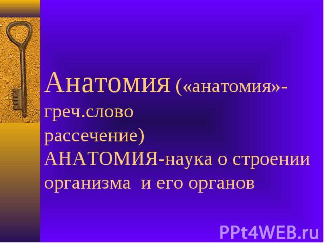 Анатомия («анатомия»-греч.словорассечение)АНАТОМИЯ-наука о строении организма и его органов