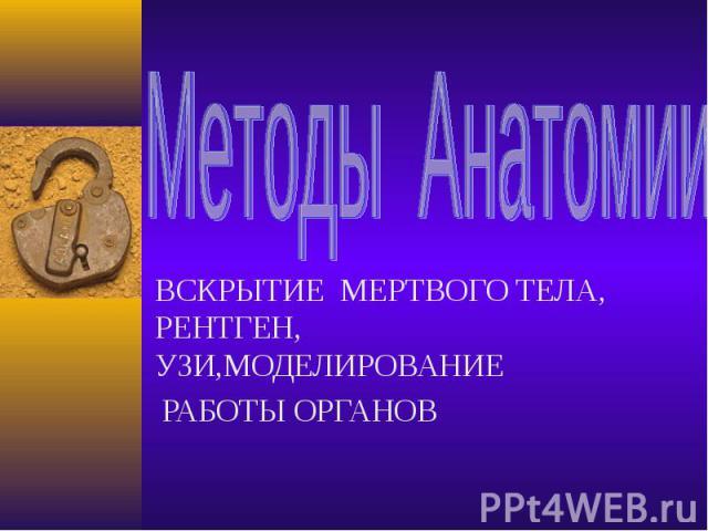 Методы Анатомии ВСКРЫТИЕ МЕРТВОГО ТЕЛА, РЕНТГЕН, УЗИ,МОДЕЛИРОВАНИЕ РАБОТЫ ОРГАНОВ