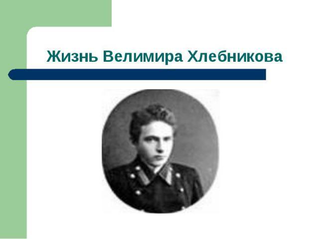 Жизнь Велимира Хлебникова