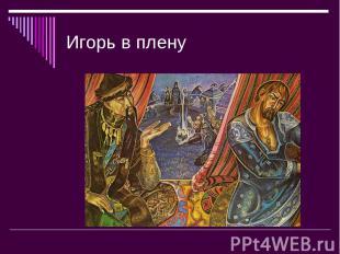 Игорь в плену