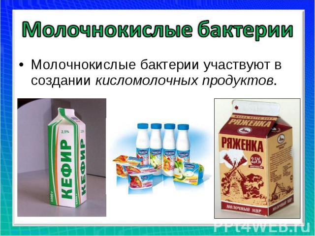 Молочнокислые бактерии Молочнокислые бактерии участвуют в создании кисломолочных продуктов.