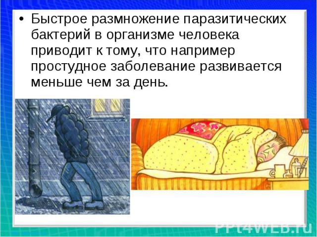 Быстрое размножение паразитических бактерий ворганизме человека приводит ктому, что например простудное заболевание развивается меньше чем задень.