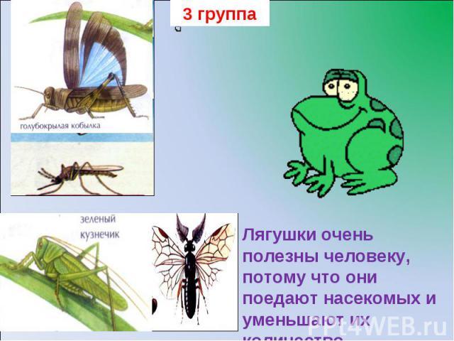 3 группаЛягушки очень полезны человеку, потому что они поедают насекомых и уменьшают их количество.