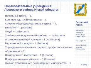 Образовательные учреждения Лесовского района Н-ской области:Начальные школы – 1.