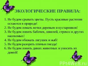 ЭКОЛОГИЧЕСКИЕ ПРАВИЛА:Не будем срывать цветы. Пусть красивые растения остаются в