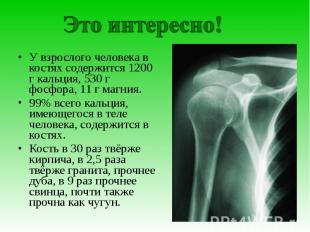 Это интересно!У взрослого человека в костях содержится 1200 г кальция, 530 г фос