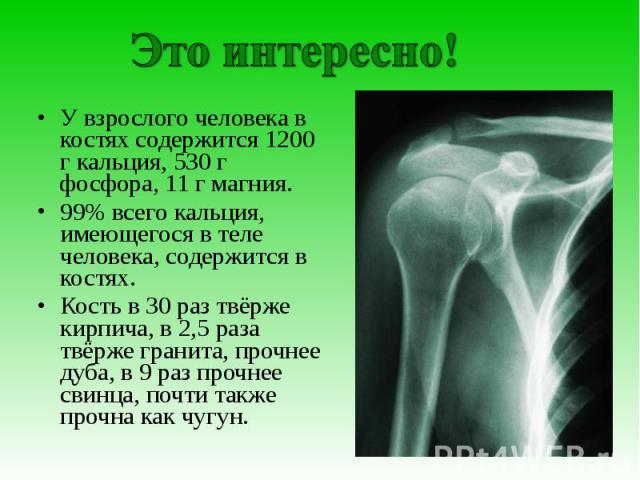 Это интересно!У взрослого человека в костях содержится 1200 г кальция, 530 г фосфора, 11 г магния.99% всего кальция, имеющегося в теле человека, содержится в костях.Кость в 30 раз твёрже кирпича, в 2,5 раза твёрже гранита, прочнее дуба, в 9 раз проч…