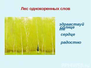Лес однокоренных слов здравствуйтесолнцесердцерадостно