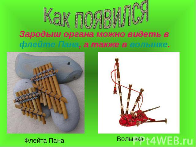 Зародыш органа можно видеть в флейте Пана, а также в волынке. Зародыш органа можно видеть в флейте Пана, а также в волынке.