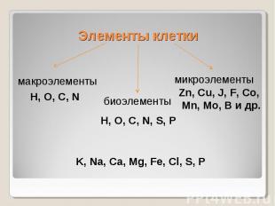 Элементы клеткимакроэлементыH, O, C, NбиоэлементыH, O, C, N, S, PмикроэлементыZn