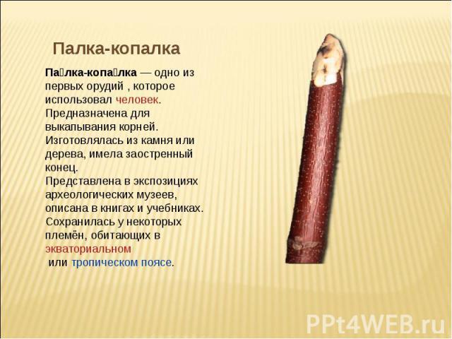 Палка-копалка Палка-копалка— одно из первых орудий , которое использовалчеловек. Предназначена для выкапывания корней. Изготовлялась из камня или дерева, имела заостренный конец.Представлена в экспозициях археологических музеев, описана в книгах и…