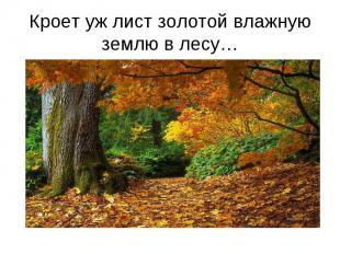 Кроет уж лист золотой влажную землю в лесу…